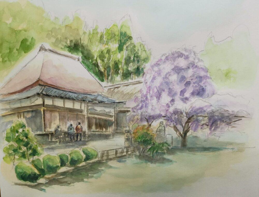 神光寺とのぼり藤のスケッチ