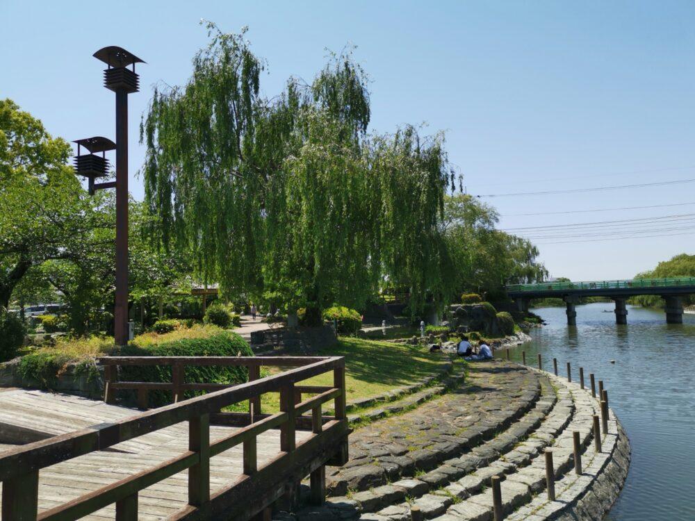 江川・鴨島公園の素晴らしい柳