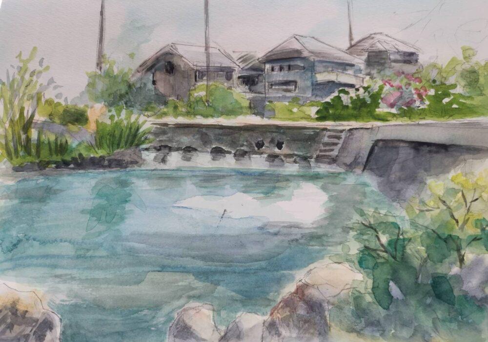 江川・鴨島公園をスケッチ。ハハクラゲ作。