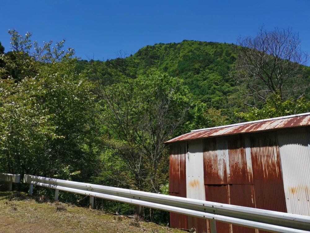 徳島県高越山