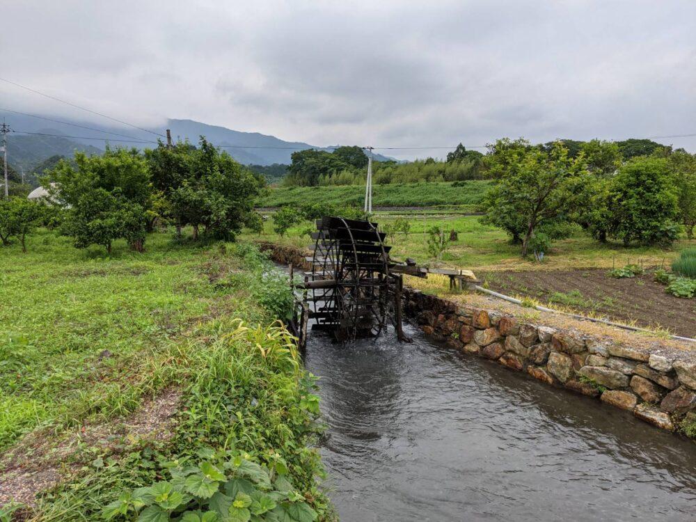 小松島の田んぼにある風車