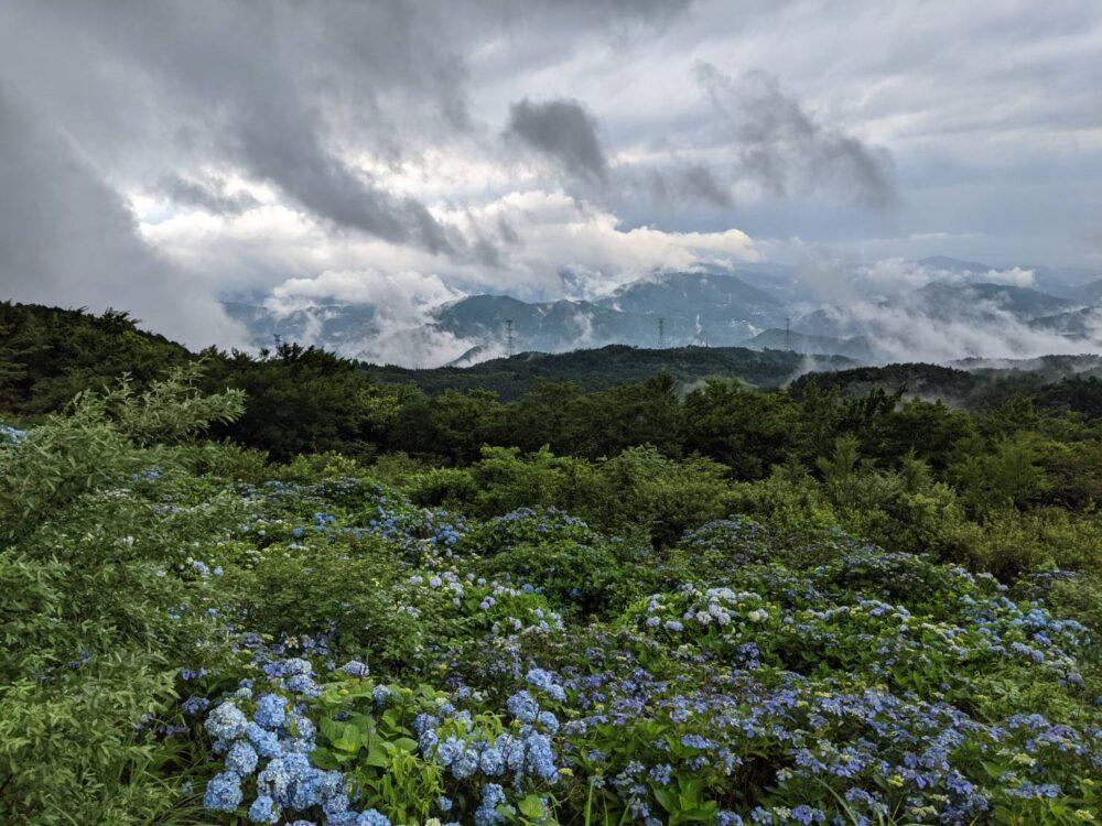 大川原高原の雲海。