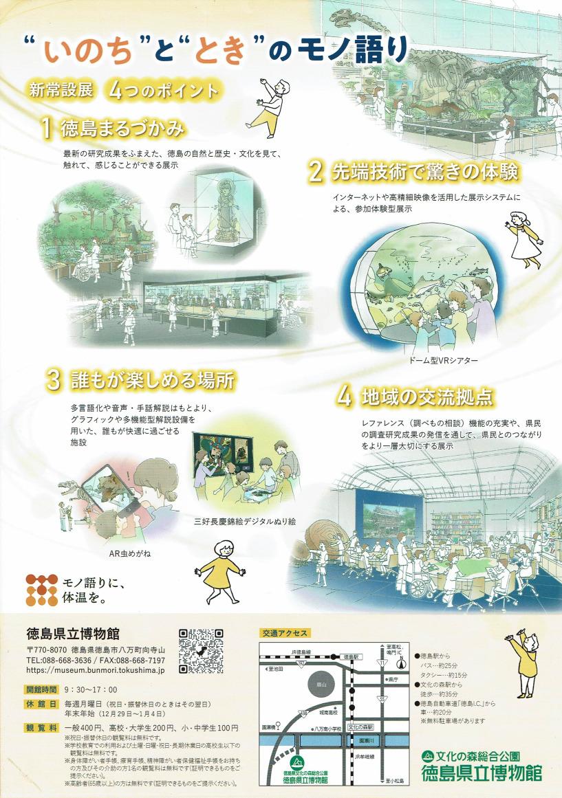 徳島県立博物館常設展示室のチラシ