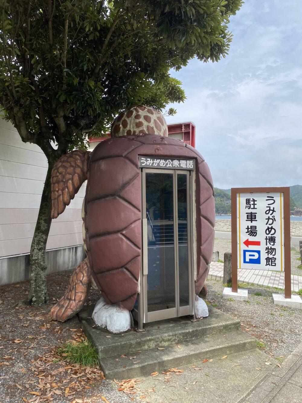 公衆電話も、もちろんウミガメ